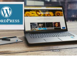 Word Press website admin